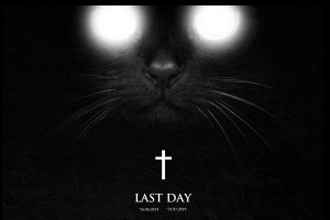 Zombie Cats - Last Day (Bad Taste)